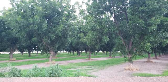 lot 17 Valle Plano, Anthony, NM 88021 (MLS #834429) :: Jackie Stevens Real Estate Group brokered by eXp Realty