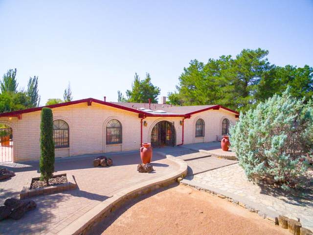458 Mulberry Avenue, El Paso, TX 79932 (MLS #834599) :: Jackie Stevens Real Estate Group brokered by eXp Realty
