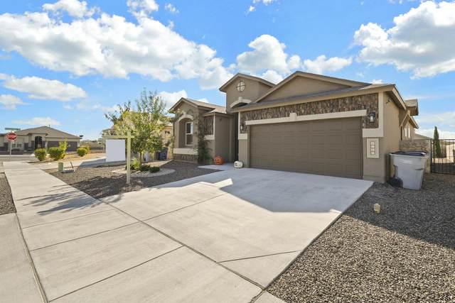 6565 Beatrice Gladstone Lane, El Paso, TX 79932 (MLS #835650) :: The Purple House Real Estate Group