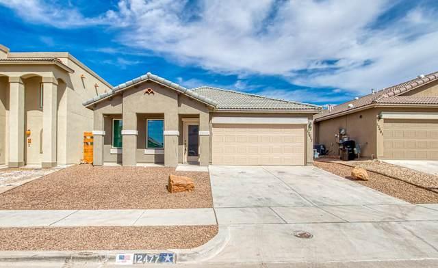 12477 Chamberlain Drive, Horizon City, TX 79928 (MLS #835792) :: The Purple House Real Estate Group