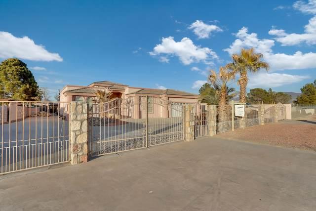 1013 Kimberley Street, El Paso, TX 79932 (MLS #837085) :: Summus Realty
