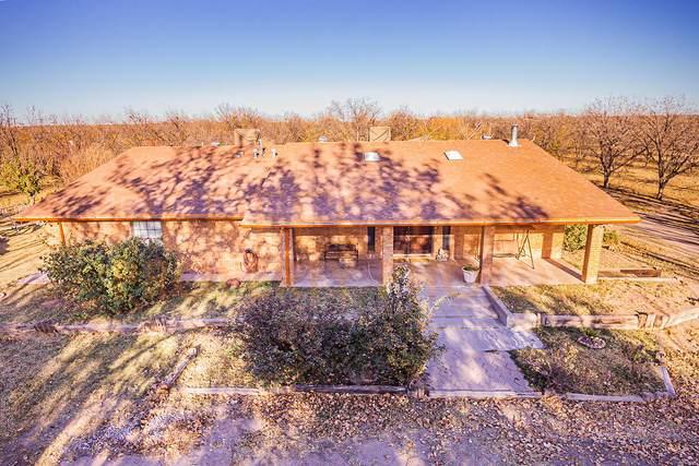 14927 Dino Road, Clint, TX 79836 (MLS #837584) :: Preferred Closing Specialists