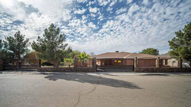 9408 Pavo Ln. Lane, El Paso, TX 79907 (MLS #838674) :: Jackie Stevens Real Estate Group brokered by eXp Realty