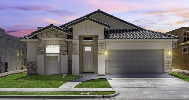 14509 Dominic Azcarate Drive, El Paso, TX 79938 (MLS #838834) :: The Purple House Real Estate Group