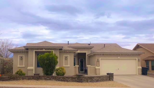 12236 Branell Lane, El Paso, TX 79928 (MLS #839450) :: The Purple House Real Estate Group