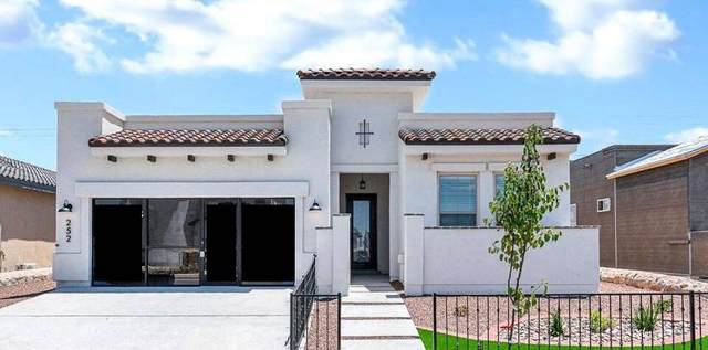 252 Emerald Day Place, El Paso, TX 79928 (MLS #839560) :: Jackie Stevens Real Estate Group