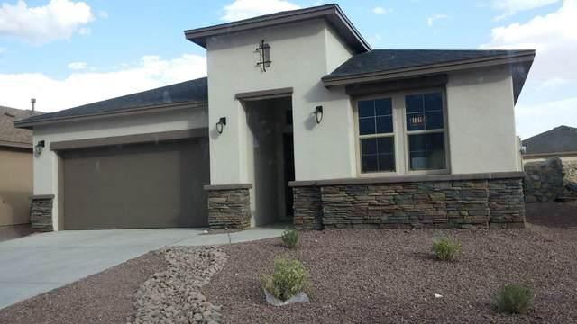 865 Blue Park Avenue, Sunland Park, NM 88063 (MLS #839581) :: The Purple House Real Estate Group