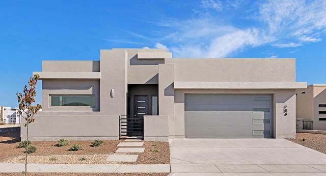 312 Emerald Rise Drive, El Paso, TX 79928 (MLS #839598) :: Jackie Stevens Real Estate Group brokered by eXp Realty