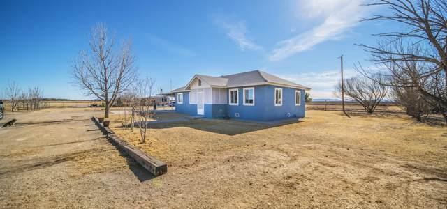 250 Island Road, Fabens, TX 79838 (MLS #840544) :: Summus Realty