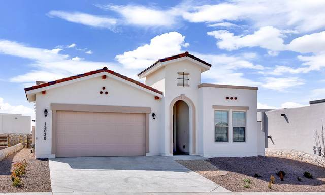 317 Emerald Rise Drive, El Paso, TX 79928 (MLS #840556) :: Jackie Stevens Real Estate Group brokered by eXp Realty