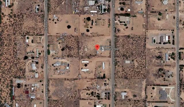 336 Geronimo Road, Chaparral, NM 88081 (MLS #840856) :: Summus Realty