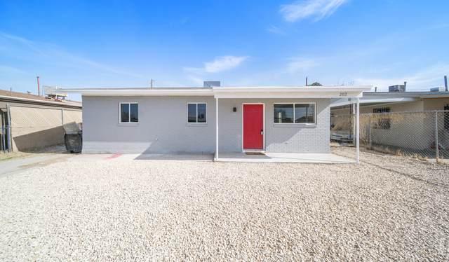 202 Coronado Road, El Paso, TX 79915 (MLS #841848) :: Preferred Closing Specialists