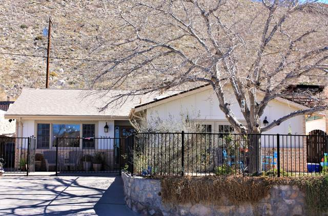 3214 Piedmont Drive, El Paso, TX 79902 (MLS #842526) :: Red Yucca Group