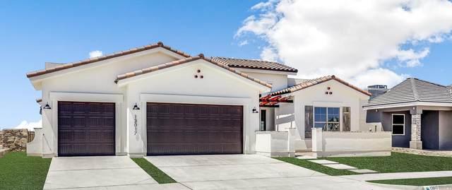 317 Emerald Pearl Drive, El Paso, TX 79928 (MLS #844187) :: The Matt Rice Group