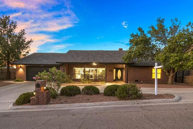 425 Sharondale Drive, El Paso, TX 79912 (MLS #846521) :: The Matt Rice Group