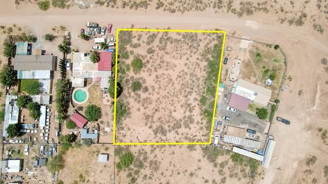 0 Green Tree Loop, Chaparral, NM 88081 (MLS #846681) :: Red Yucca Group