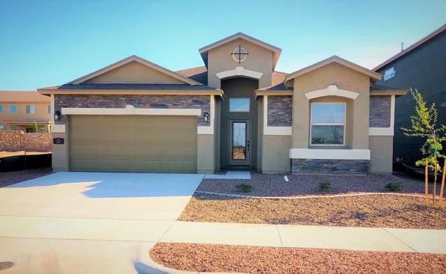 204 Playa Tronones Drive, El Paso, TX 79932 (MLS #846849) :: Jackie Stevens Real Estate Group
