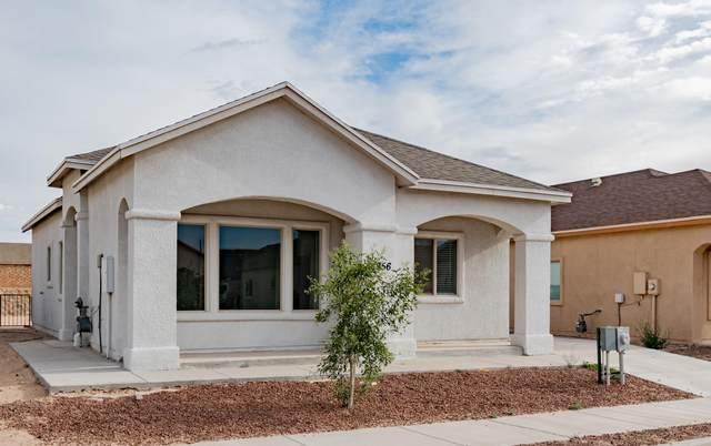 14356 Seth Payne Drive, Horizon City, TX 79928 (MLS #846986) :: Preferred Closing Specialists