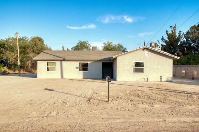 176 Lanza Lane, Socorro, TX 79927 (MLS #847641) :: Mario Ayala Real Estate Group