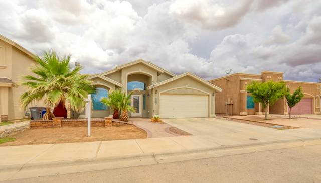 12625 Paseo Rosannie Avenue, El Paso, TX 79928 (MLS #848369) :: Preferred Closing Specialists