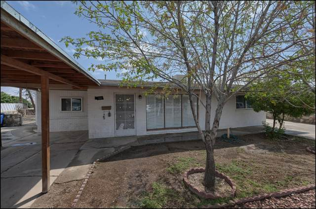 7051 Becky Lane, El Paso, TX 79915 (MLS #848400) :: Jackie Stevens Real Estate Group