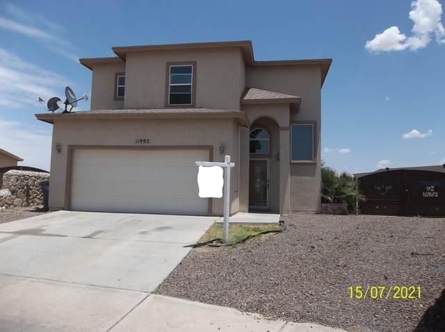 11992 Mesquite Bush, El Paso, TX 79934 (MLS #848869) :: Red Yucca Group
