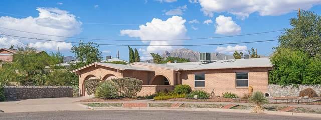 735 De Leon Drive, El Paso, TX 79912 (MLS #849207) :: Preferred Closing Specialists