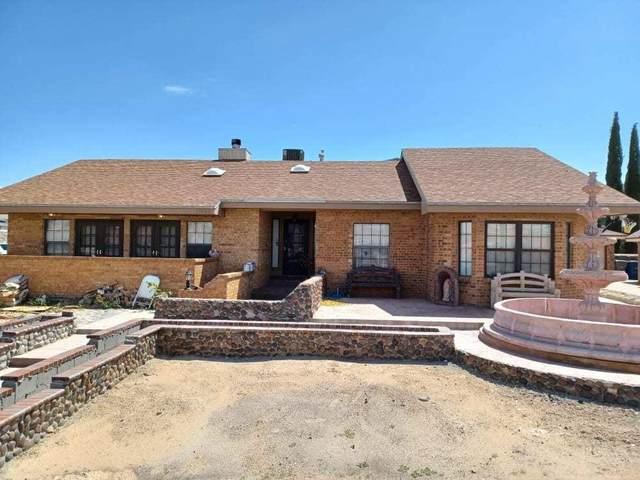 11460 Tom Ulozas Drive, El Paso, TX 79936 (MLS #849616) :: The Purple House Real Estate Group