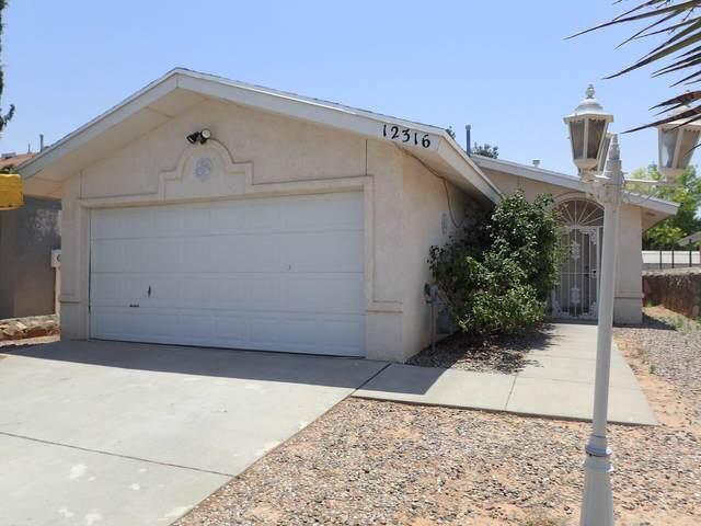 12316 Bill Mitchell Drive, El Paso, TX 79938 (MLS #849941) :: Preferred Closing Specialists