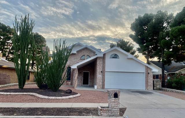 1671 Donna Caponi Lane, El Paso, TX 79936 (MLS #850089) :: Preferred Closing Specialists