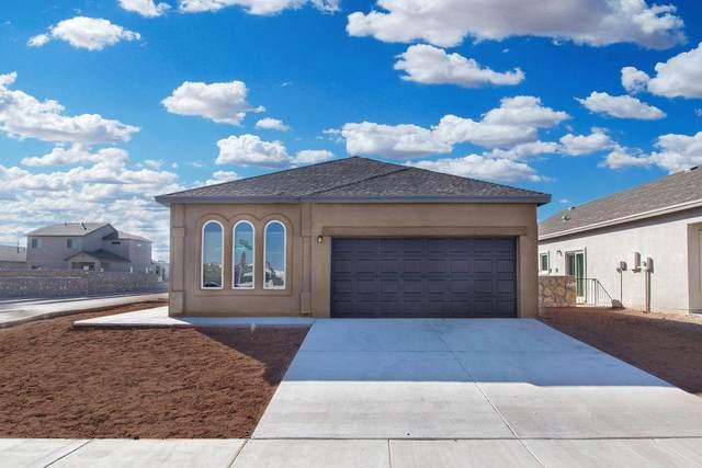 13537 Harbottle Avenue, Horizon City, TX 79928 (MLS #850208) :: Mario Ayala Real Estate Group