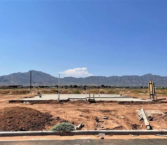 10617 Hidden Palm Place, El Paso, TX 79924 (MLS #850304) :: Preferred Closing Specialists