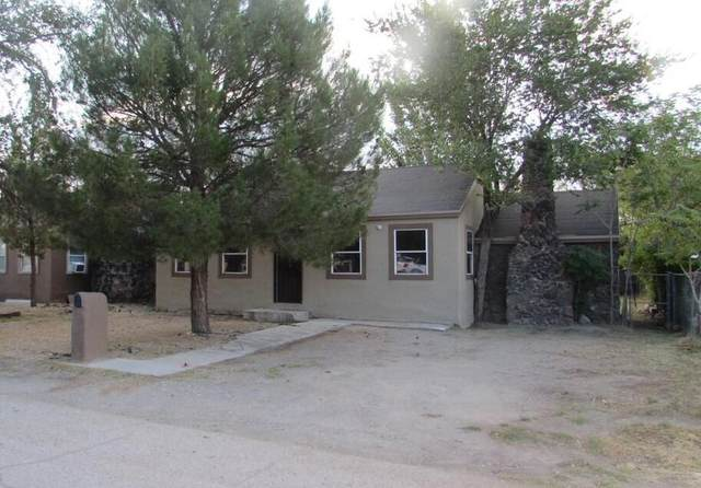 375 Ontiveros Street, El Paso, TX 79932 (MLS #850405) :: The Purple House Real Estate Group