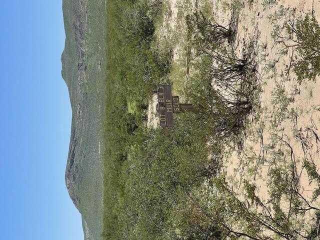 17164 Adeline Avenue, El Paso, TX 79938 (MLS #851126) :: Jackie Stevens Real Estate Group