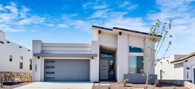 713 Birmingham Place, El Paso, TX 79928 (MLS #851787) :: Jackie Stevens Real Estate Group