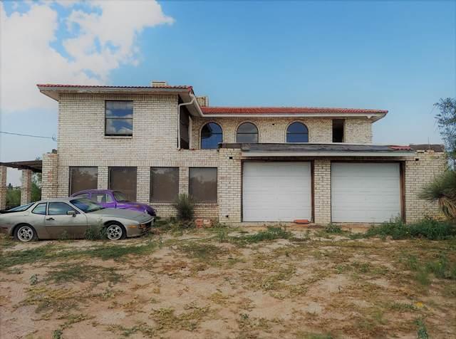 1301 Ascencion Street, El Paso, TX 79928 (MLS #851883) :: Preferred Closing Specialists