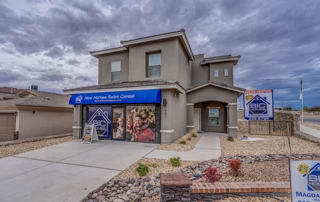 13606 Hazelwood Street, El Paso, TX 79928 (MLS #852113) :: The Purple House Real Estate Group