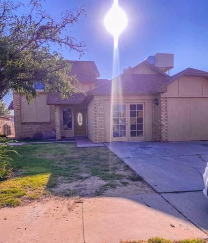 1996 Dana Bree Drive, El Paso, TX 79936 (MLS #852147) :: Summus Realty