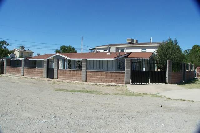 10064 Stedham Circle, El Paso, TX 79927 (MLS #853470) :: Mario Ayala Real Estate Group