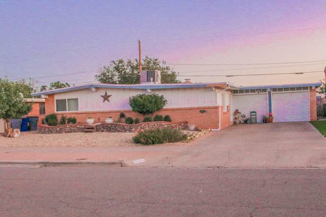 5124 Paris Avenue, El Paso, TX 79924 (MLS #853632) :: Jackie Stevens Real Estate Group
