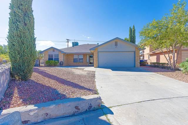 7404 Jon Meier Court, El Paso, TX 79912 (MLS #853821) :: Mario Ayala Real Estate Group
