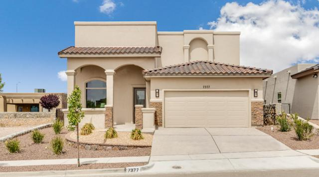 7377 Golden Sage Drive, El Paso, TX 79911 (MLS #724359) :: Preferred Closing Specialists