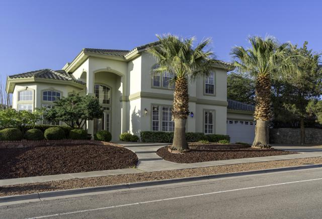 1143 Eagle Ridge Drive, El Paso, TX 79912 (MLS #810136) :: The Matt Rice Group