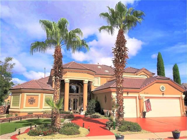 613 Cinnamon Teal Circle, El Paso, TX 79932 (MLS #813116) :: The Matt Rice Group