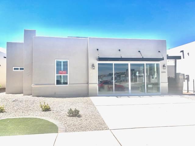 12312 Desert Hawk Avenue, El Paso, TX 79938 (MLS #817684) :: Jackie Stevens Real Estate Group brokered by eXp Realty