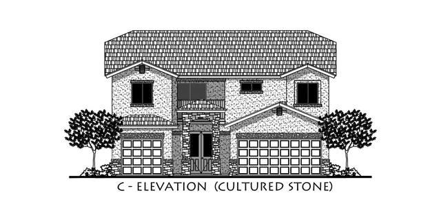 12596 Clocker Drive, El Paso, TX 79928 (MLS #831163) :: Mario Ayala Real Estate Group