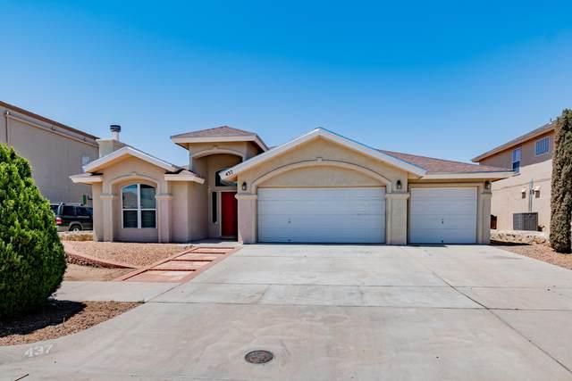 437 Desert Dandelion Street, Horizon City, TX 79928 (MLS #844859) :: The Purple House Real Estate Group