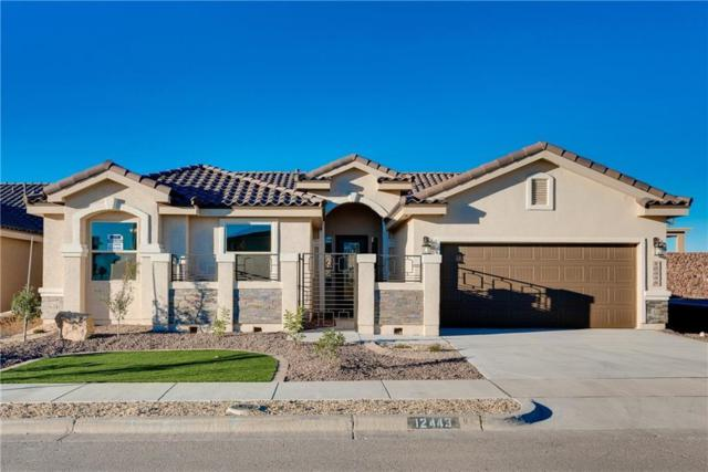 966 Grandevole Court, El Paso, TX 79932 (MLS #727112) :: The Matt Rice Group