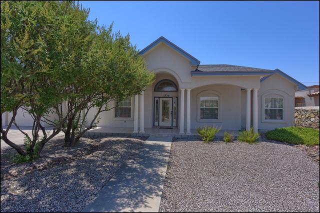 11336 Patricia Avenue, El Paso, TX 79936 (MLS #807676) :: The Matt Rice Group