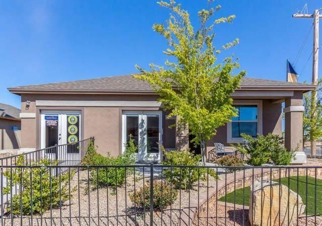 535 Dusk View Street, Socorro, TX 79927 (MLS #823498) :: Preferred Closing Specialists